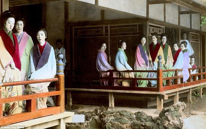 Kỹ nữ được trưng bày trong lồng ở Nhật 100 năm trước và câu chuyện làm đẹp để thoát thân - 8