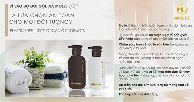 Bộ đôi tinh chất gội, xả thảo dược thiên nhiên Molle – lựa chọn an toàn cho mọi đối tượng - 1
