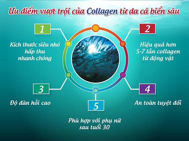 Bio Marine Collagen – collagen sinh học từ cá biển sâu giúp ngăn ngừa lão hóa, giảm vết nhăn da - 3