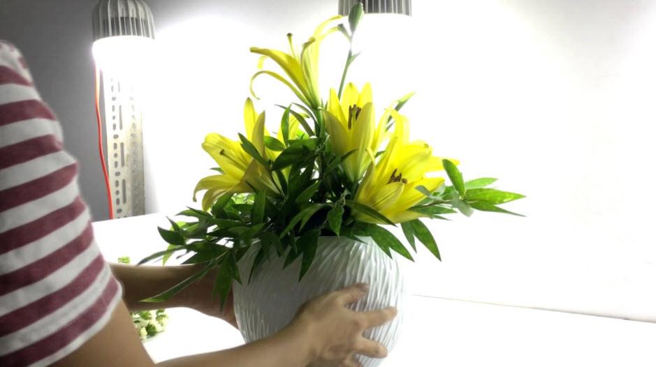 Cắm Hoa Nghệ Thuật: Hướng dẫn cách cắm hoa đẹp đơn giản nhất