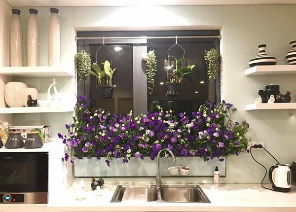 amp;#34;Vườn hoaamp;#34; độc đáo trên cửa sổ nhà bếp của bà mẹ khéo tay Hà Thành - 10