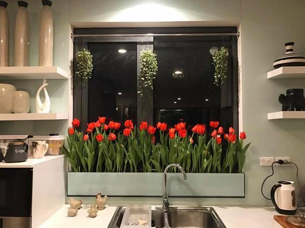 amp;#34;Vườn hoaamp;#34; độc đáo trên cửa sổ nhà bếp của bà mẹ khéo tay Hà Thành - 2