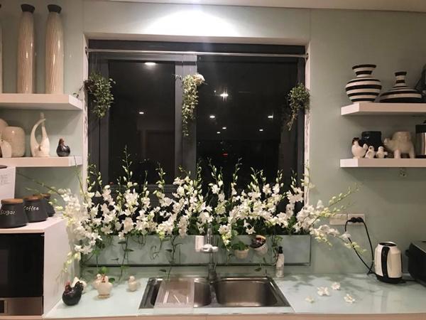 amp;#34;Vườn hoaamp;#34; độc đáo trên cửa sổ nhà bếp của bà mẹ khéo tay Hà Thành - 5