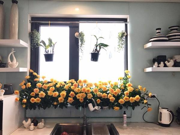 amp;#34;Vườn hoaamp;#34; độc đáo trên cửa sổ nhà bếp của bà mẹ khéo tay Hà Thành - 6