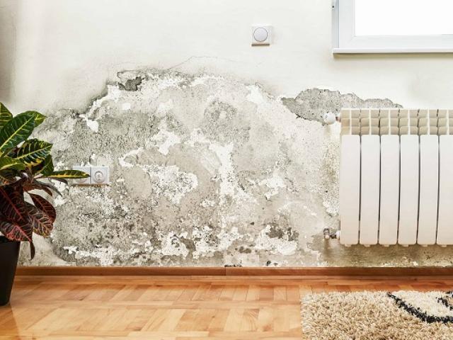 Bí quyết để nhà cửa luôn khô ráo trong thời tiết nồm ẩm, mẹ nào cũng muốn biết