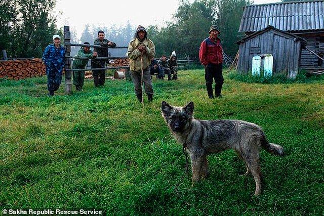 Cuộc sống mới của bé gái lạc 2 tuần trong rừng, sống nhờ quả dại và chú chó trung thành - 4