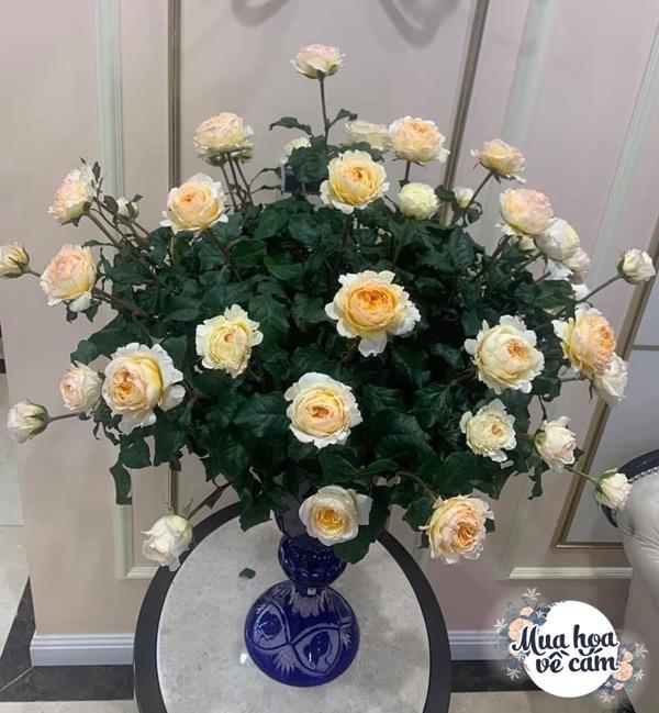 """Mẹ Hà Nội cắm hoa đẹp nức lòng, ngày nào không có là bị chồng con """"ra công điện khẩnamp;#34; - 8"""