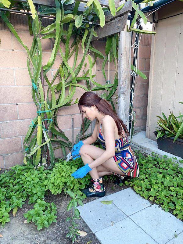 amp;#34;Gái nhảyamp;#34; Minh Thư mặc bikini ra vườn hái bưởi, quả nào quả nấy căng tràn vẫn bị chê - 12