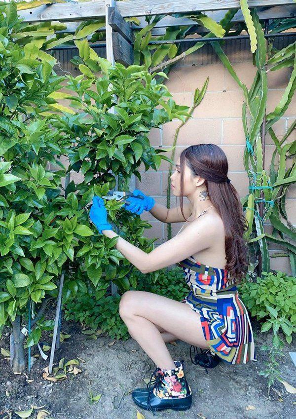 amp;#34;Gái nhảyamp;#34; Minh Thư mặc bikini ra vườn hái bưởi, quả nào quả nấy căng tràn vẫn bị chê - 10