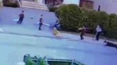 Cậu bé 3 tuổi bị chó pitbull tấn công kinh hoàng ngay giữa phố