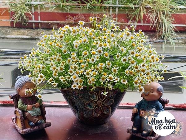"""Mẹ Việt tự tay cắm hoa 20/10, nhìn đến ảnh chim công, dân mạng thốt lên """"nức nở"""" - 18"""