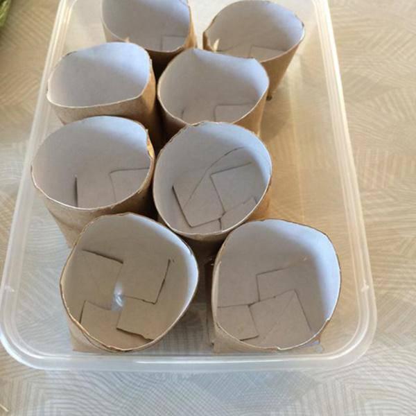 Chỉ mất 5 phút trồng vào lõi giấy vệ sinh, cả năm đỡ tốn tiền mua hành lá - 5