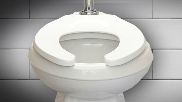 Tại sao ở bồn cầu vệ sinh ở Mỹ lại có khoảng trống trước? Hóa ra đây là lý do - 3