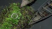 Những nông trại nổi trên mặt nước đã giúp nông dân Bangladesh đối phó với ngập lụt ra sao?