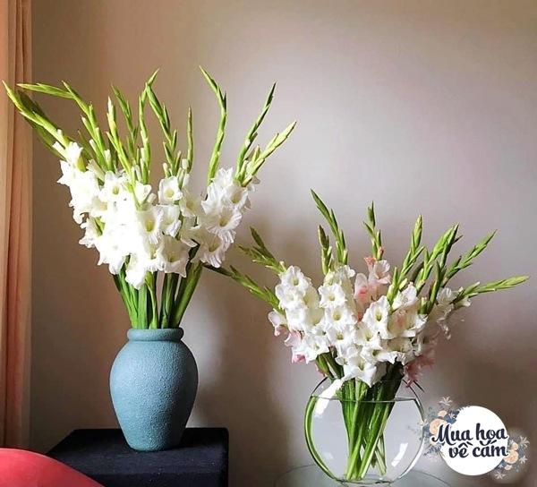 Nhìn hoa nhớ mẹ, 8X Việt ở nước ngoài cắm loại hoa chơi Tết đẹp siêu lòng - 6