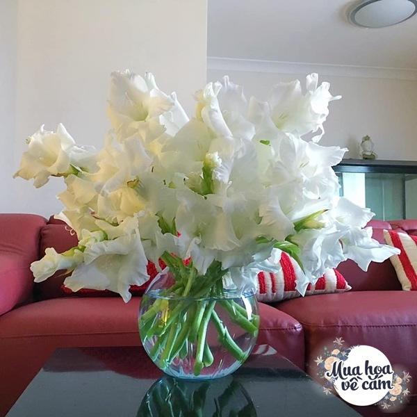 Nhìn hoa nhớ mẹ, 8X Việt ở nước ngoài cắm loại hoa chơi Tết đẹp siêu lòng - 19