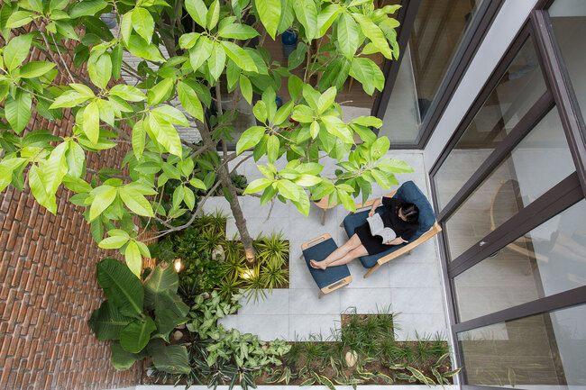 Gia chủ Đà Nẵng mang vườn vào đặt giữa nhà khiến báo ngoại cũng phải khen - 8