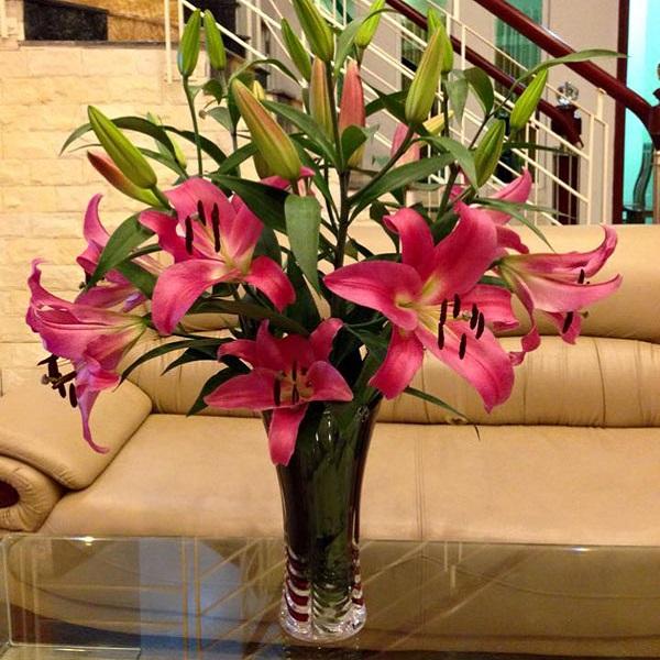 Hướng dẫn cách cắm hoa ngày Tết đẹp để rước tài lộc, may mắn - 12