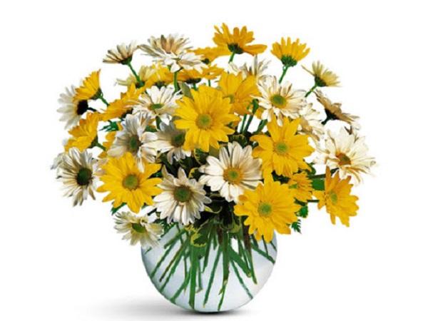 Hướng dẫn cách cắm hoa ngày Tết đẹp để rước tài lộc, may mắn - 19