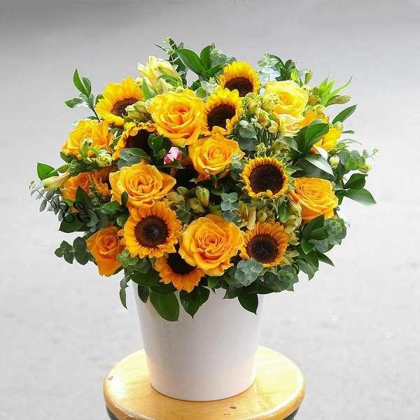 Cách cắm hoa Hướng Dương đẹp, nghệ thuật ai cũng phải khen - 5