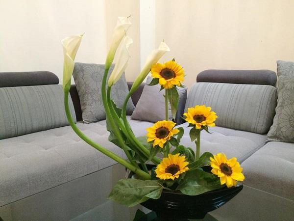 Cách cắm hoa Hướng Dương đẹp, nghệ thuật ai cũng phải khen - 4