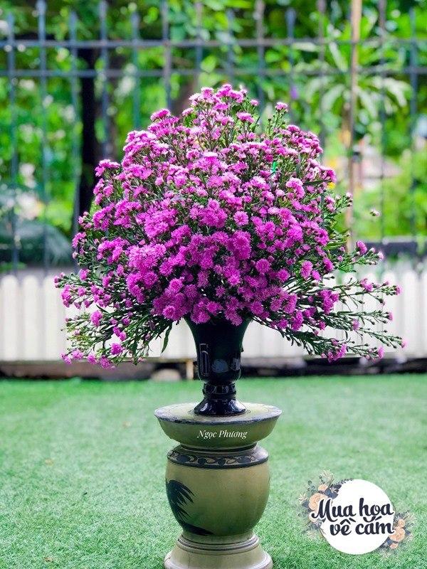 Cô giáo Hà Nội gợi ý những mẫu hoa cắm Tết siêu xinh, chắc chắn nhà nào cũng có - 6
