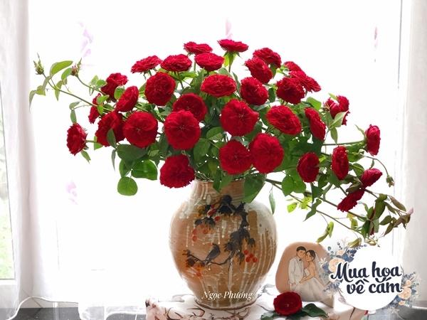 Cô giáo Hà Nội gợi ý những mẫu hoa cắm Tết siêu xinh, chắc chắn nhà nào cũng có - 17